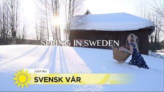 Här driver Jonna med den svenska våren – se hennes kamp mot snön - Nyhetsmorgon (TV4)