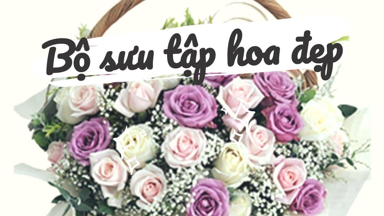 Top những mẫu Hoa Chúc Mừng Tuyệt Đẹp không thể rời Mắt   | hoahoa.net