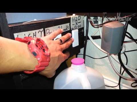 MOVEMBER=DIY 55 gallon reef update