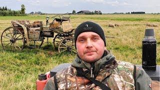 Поехал за металлоломом нашёл старую карету! 🔥