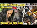 Review Panda Mini Pliharaan Dede Inoen Plus Giveaway  Mp3 - Mp4 Download