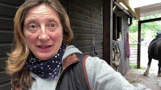 """30 Day Horse Vlog Day 19 - Feel even more ickier / Sue cheers us up with her """"interesting"""""""