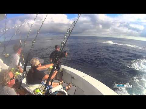 2014 Mississippi Gulf Coast Billfish Classic - Iona Louise