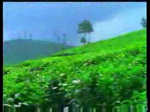 Kerala - Gods own Country