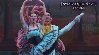 マリインスキー・バレエ 2018日本公演 「白鳥の湖」「ドン・キホーテ」...