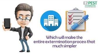 Bed Bug Exterminator in NYC! Inspection & Extermination!