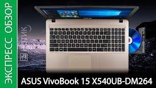 Экспресс-обзор ноутбука ASUS VivoBook 15 X540UB-DM264