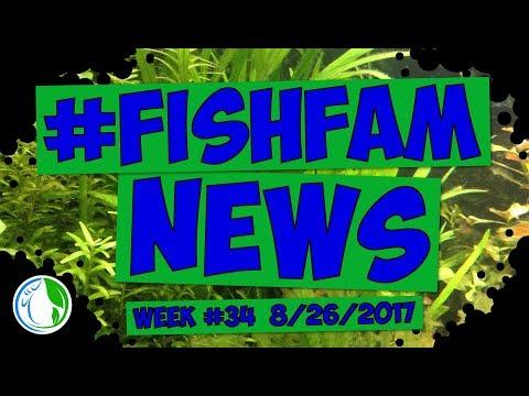 The Fish Family News - Extra Extra!! Fishfam