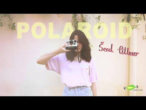 โพลารอยด์ (Polaroid) - Seal Pillow [Official Audio]