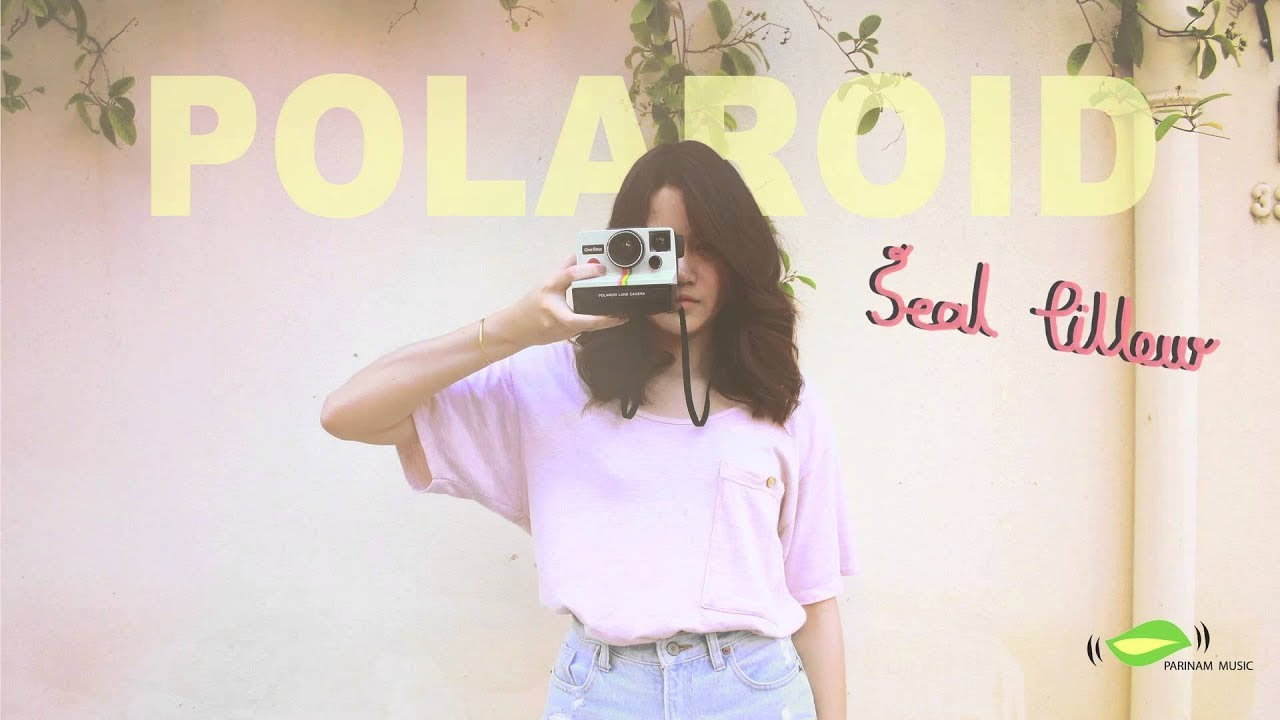 Polaroid  Seal Pillow Official Audio  YouTube