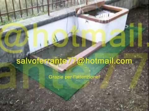 Vasca per pesci con fontanella e youtube for Vasca per stagno