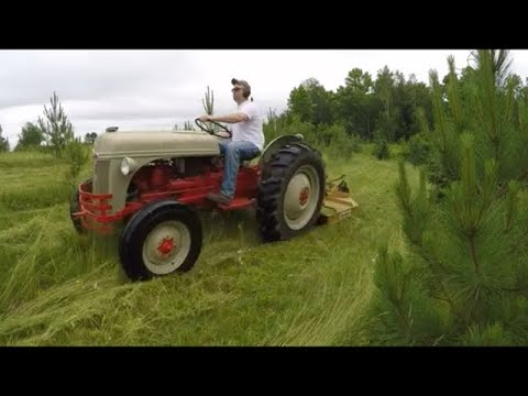 Ford 8N Tractor Brush-Hogging on the 4th of July - New X231 Video Preview - and More...