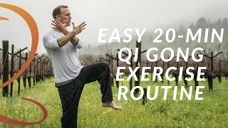 20-Min Qi Gong Exercise Routine - Easy Home Workout with Lee Holden