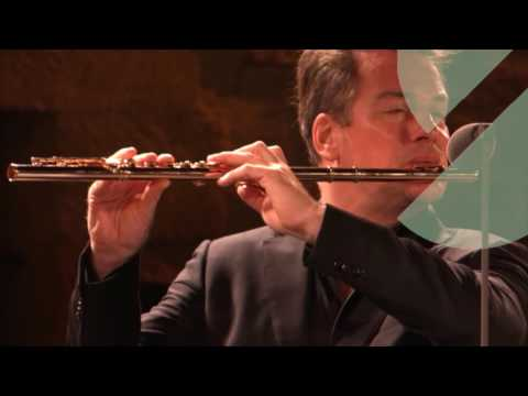 PahudTelemannFlute Concerto in G major  Doovi