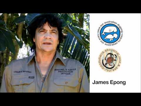 Bob Irwin,Ben Cropp and James Epong call for moratorium on killing dugong and sea turtles