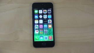 iPhone 5S iOS 8.3 Beta - Review (4K)