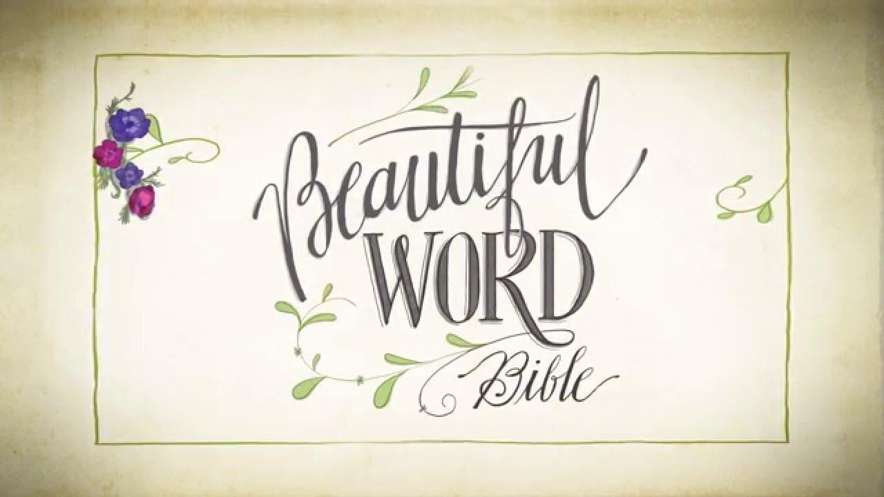 The NIV Beautiful Word Bible