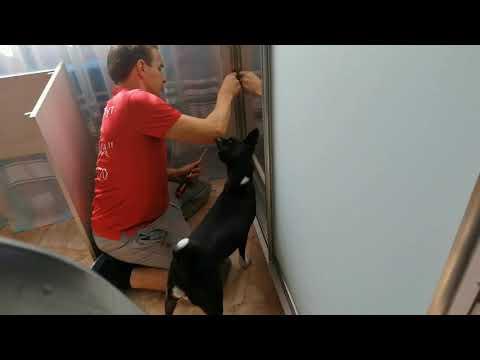 Шкаф-купе Евгении