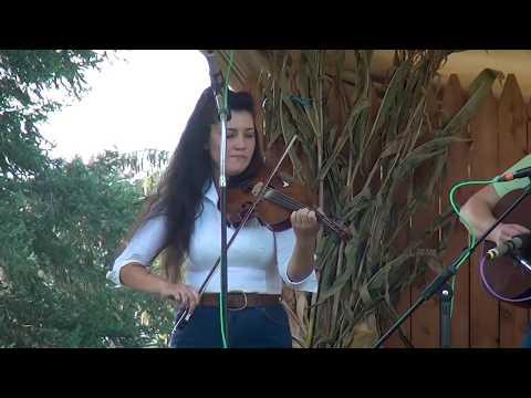 Lyons Fiddle Festival fiddle contest Class 3 (2017)