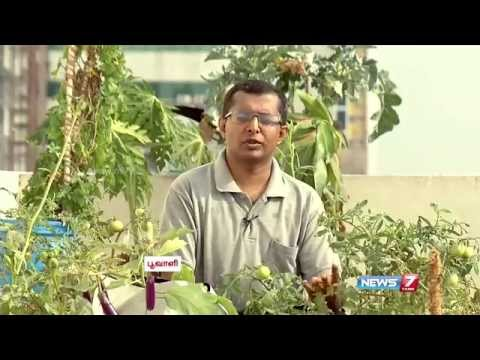 Useful tips for Terrace Gardening at home | Poovali | News7 Tamil