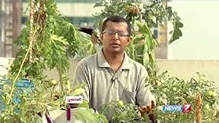 Useful tips for Terrace Gardening at home   Poovali   News7 Tamil
