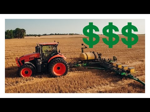 The MOST PROFITABLE THING We Do On Our Farm