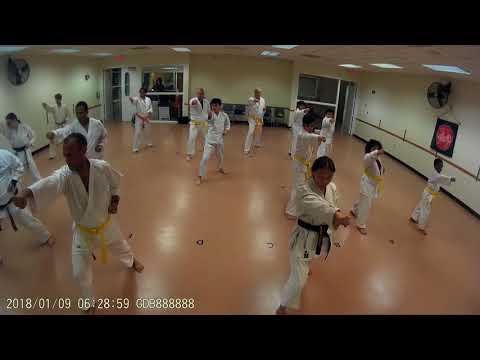 Karate Class 1-9-18
