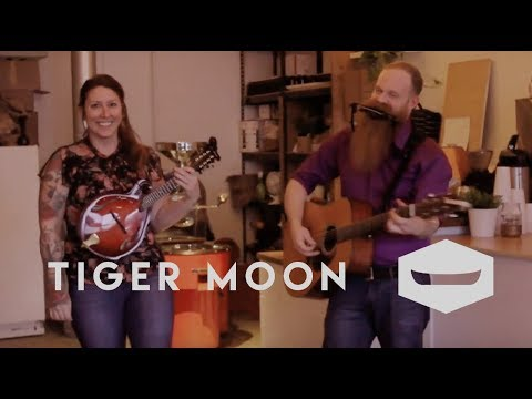 TIGER MOON - 'This is Why We Can't Have Nice Things', live @ Canoe Coffee Roasters