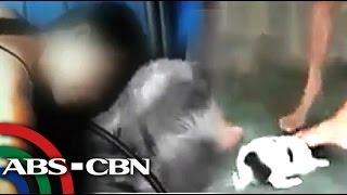 Netizens, Ikinagalit Ang Bagong Animal Crush Video