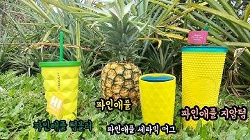 스타벅스 하와이 파인애플 텀블러 3종 리뷰