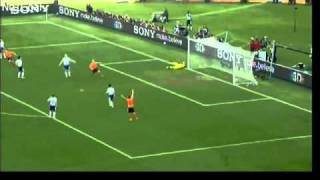 2010 World Cup Wonderful Goals.flv
