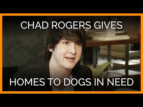 Celeb Realtor Chad Rogers Gives Homes to Dogs in Need - YouTube