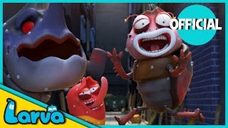larva - best of larva  funny cartoons for kids  cartoons for children  larva official week 4 2017