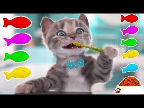 Play Fun Pet Kitten Care Kids Game - Little Kitten Preschool - Kitten Go To School Early Learn Games