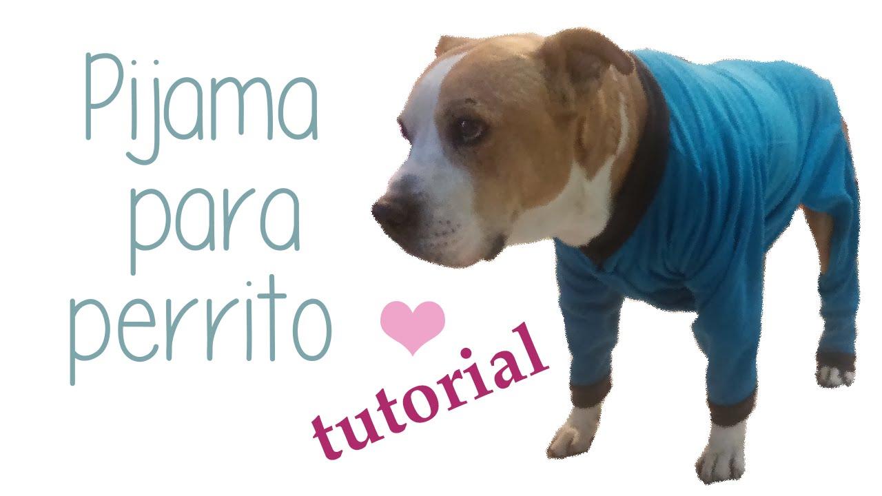 Cómo hacer una pijama para perro - YouTube