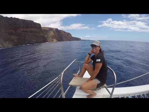 Maui Sailing With Gemini Charters
