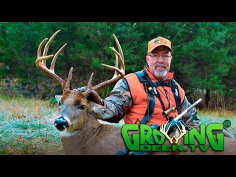 4 Super Bucks Down, Rut!! Deer Hunting Strategies That Worked! (#315) @GrowingDeer.tv