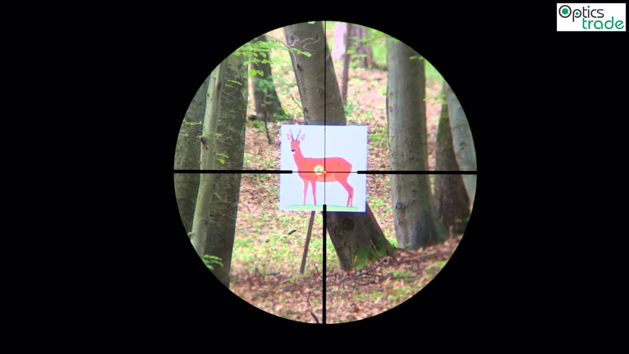 Zeiss conquest dl reticle subtensions youtube