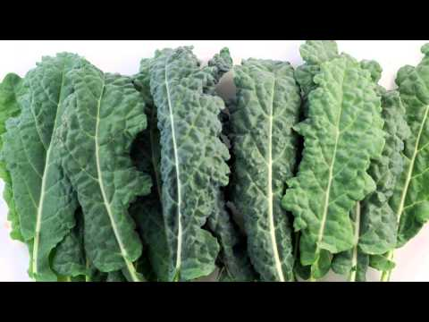 Harvest of the Month - Organic Dino Kale
