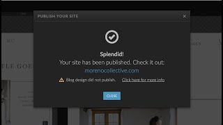 Showit Blog design did not publish   Here's how to fix it