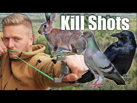 catapult-hunting/pest-control-pigeon-crow-and-rabbit