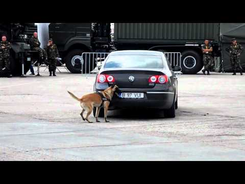 BSDA 2012 - Black Sea Defense & Aerospace - demonstratie part 2