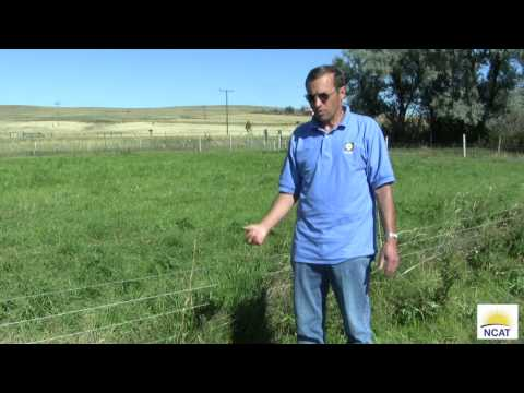 Intensive Grazing: One Farm's Set Up. Chapter 4. Stock Water System