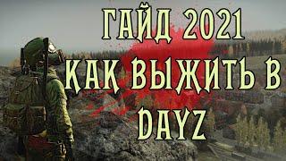 Дейз Гайд 2021 | Гайд для новичков | Как выжить в DayZ (Устарело)