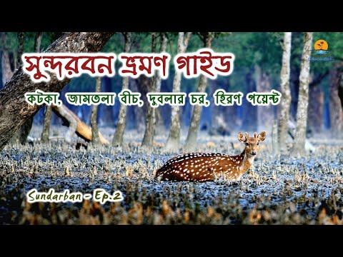 সুন্দরবন - পর্ব ২ । Kotka । Jamtola Beach । Dublar Chor । Hiron Point । Sundarban - Part 2 । Khulna