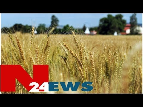 #LandExpropriation decision made hastily, say analysts | Daily News