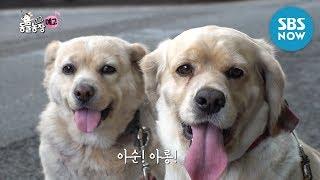 [TV 동물농장] Ep.926 예고