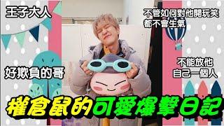 SEVENTEEN(세븐틴)-權倉鼠的可愛爆擊日記(part1)-Hoshi Cute and funny moments MP3
