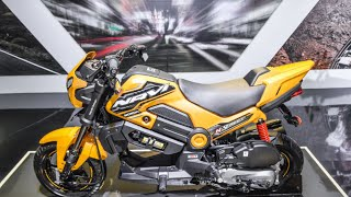Honda Navi Adventure, Street and Off road concepts and colors