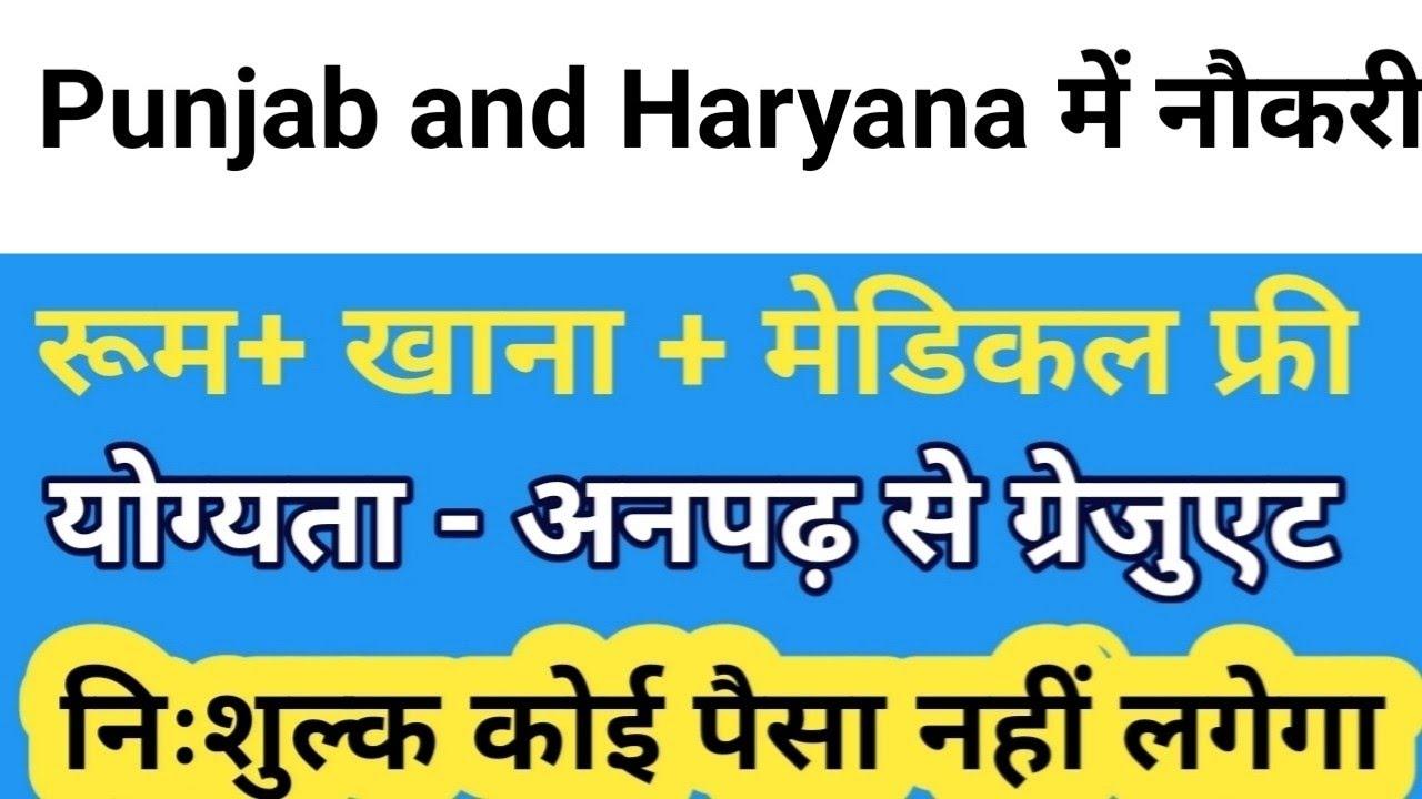 Jobs in Punjab and Haryana